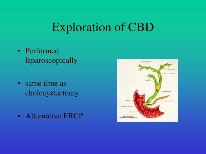 Exploration of CBD