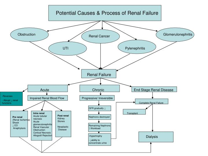 Renal Failure Concept Map.Ppt Alterations Of Renal And Urinary Tract Function Concept Maps