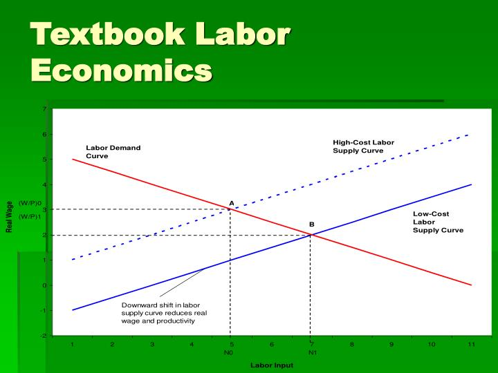 Textbook Labor Economics