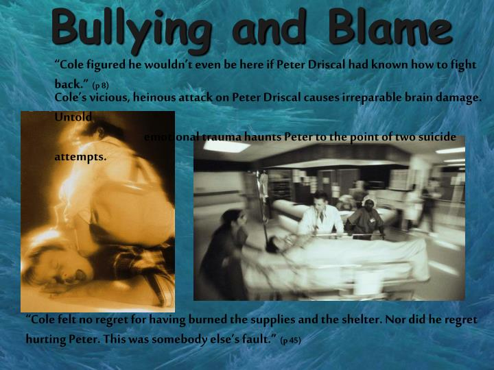 Bullying and Blame
