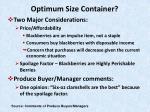 optimum size container31