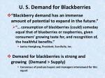u s demand for blackberries