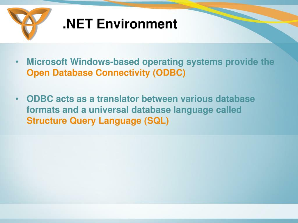 .NET Environment