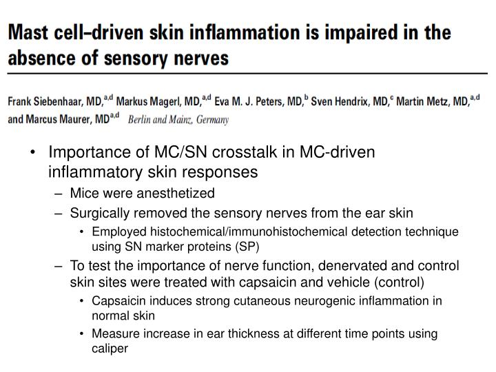 Importance of MC/SN crosstalk in MC-driven inflammatory skin responses
