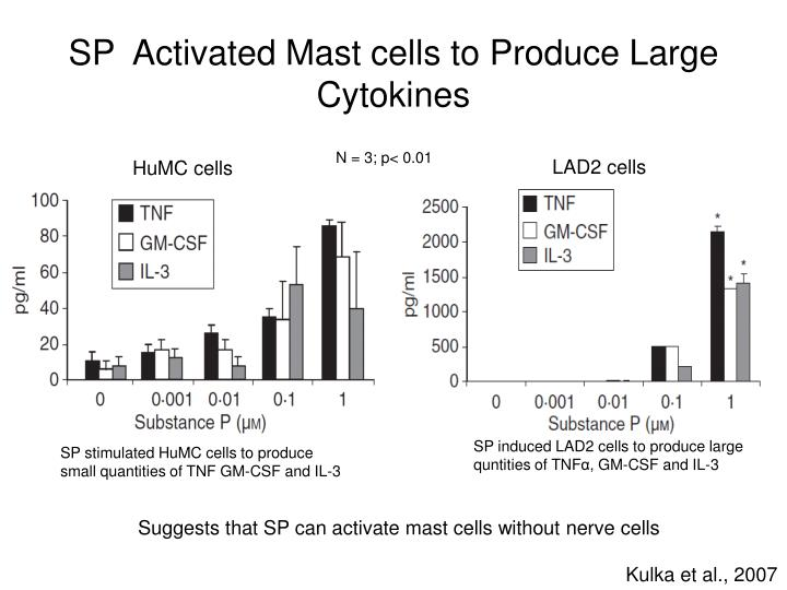 SP  Activated Mast cells to Produce Large Cytokines
