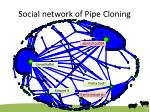 social network of pipe cloning