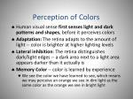 perception of colors