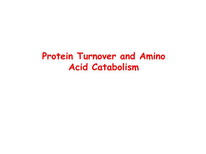 protein turnover and amino acid catabolism n.