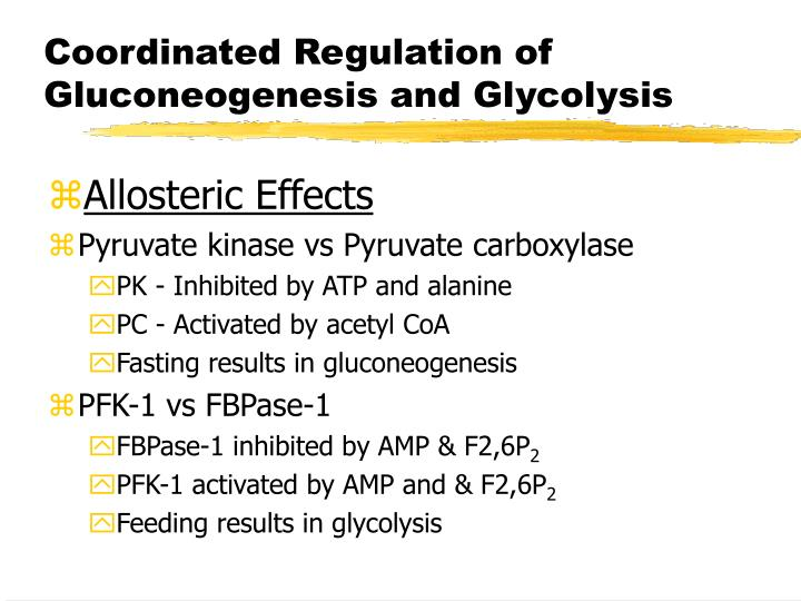 Coordinated Regulation of Gluconeogenesis and Glycolysis