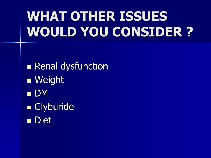 WHAT OTHER ISSUES WOULD YOU CONSIDER ?