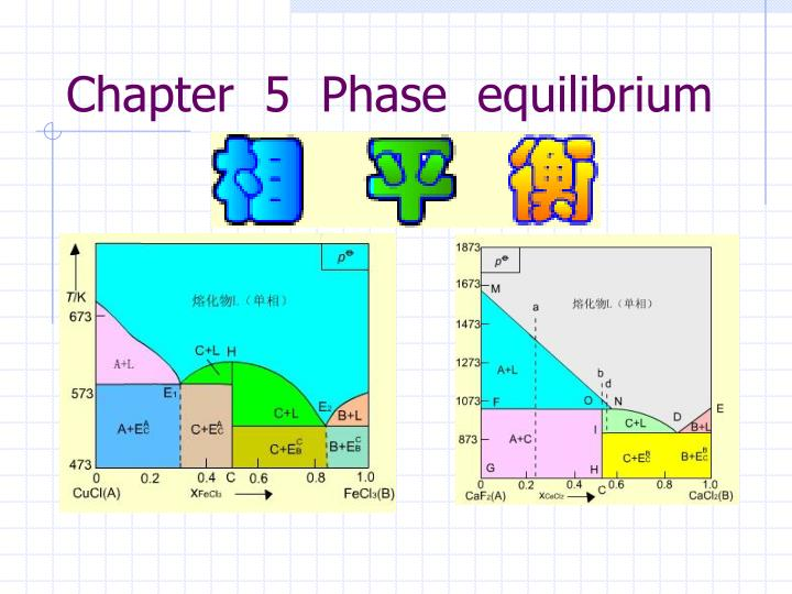 chapter 5 phase equilibrium n.
