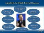 ingredients for mobile internet success