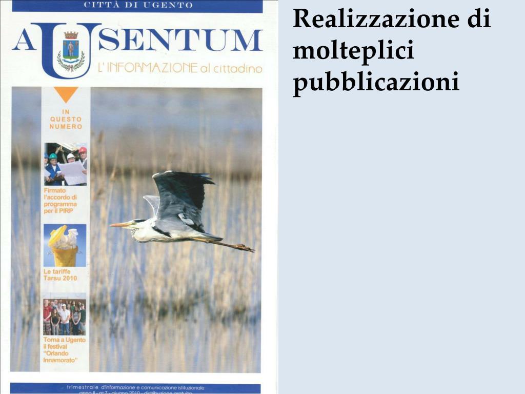 Realizzazione di molteplici pubblicazioni