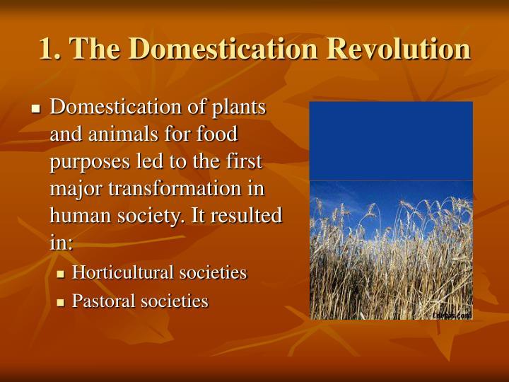 1 the domestication revolution