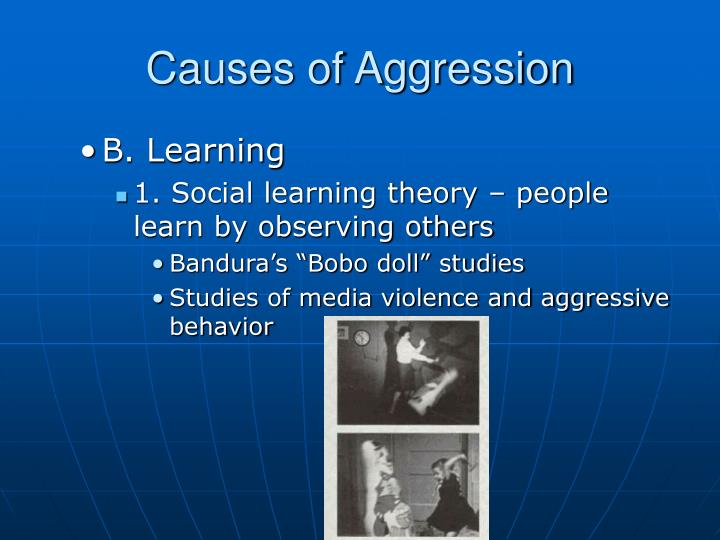 causes of aggression and its effects Homelessness and its effects on school age children by the time homeless children reach school age, their homelessness affects their social, physical, and academic lives homeless children are not simply at risk most suffer specific physical, psychological, and emotional damage due to the circumstances that accompany episodes of.