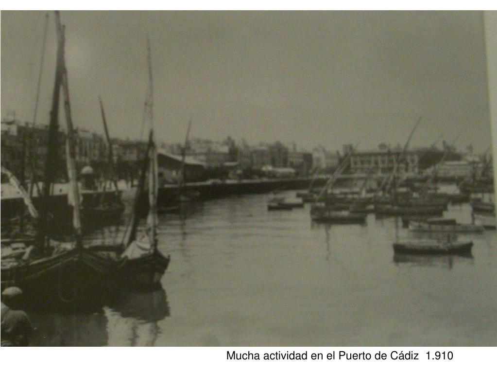 Mucha actividad en el Puerto de Cádiz  1.910