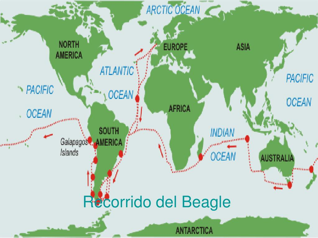 Recorrido del Beagle