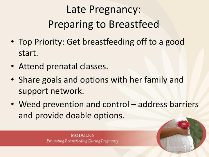 Late Pregnancy: