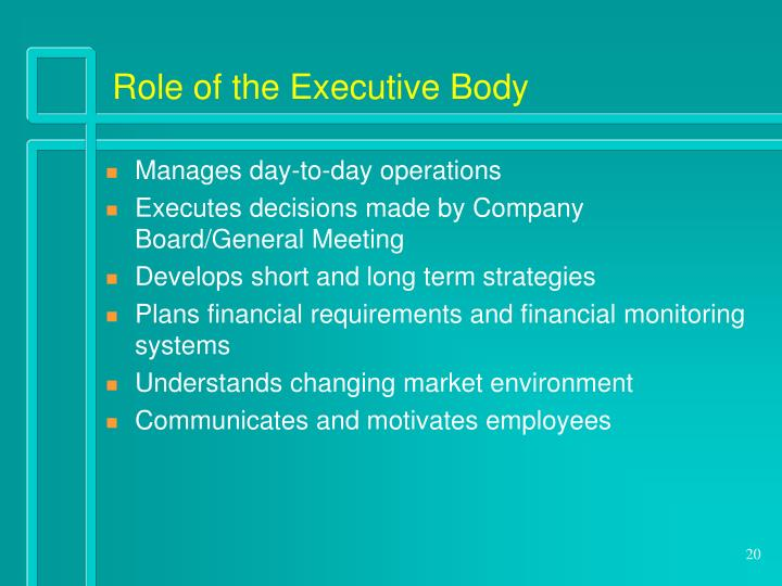 Role of the Executive Body