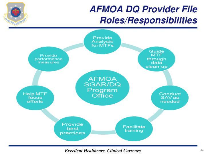 AFMOA DQ Provider File Roles/Responsibilities