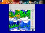 lma radar flash animation