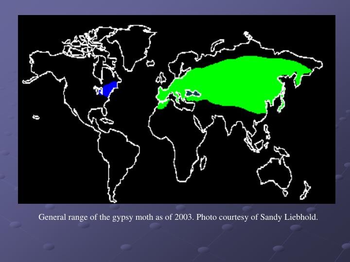 General range of the gypsy moth as of 2003. Photo courtesy of Sandy Liebhold.