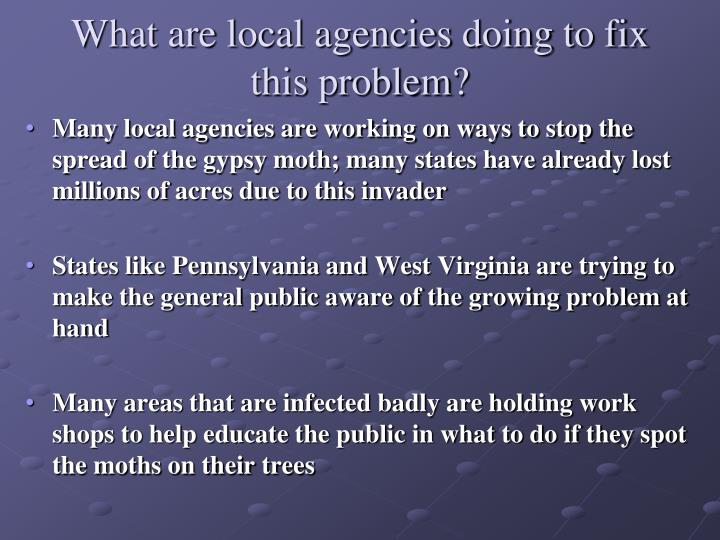 What are local agencies doing to fix this problem?