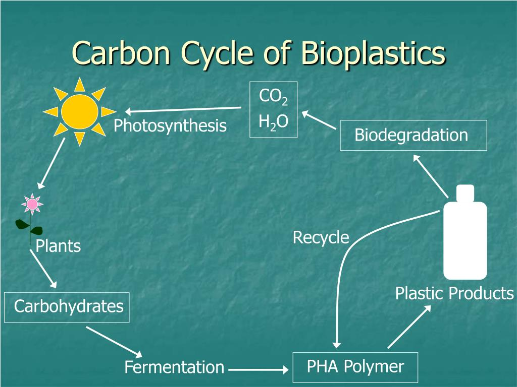PPT - Biodegradable Plastics Produced by Microorganisms