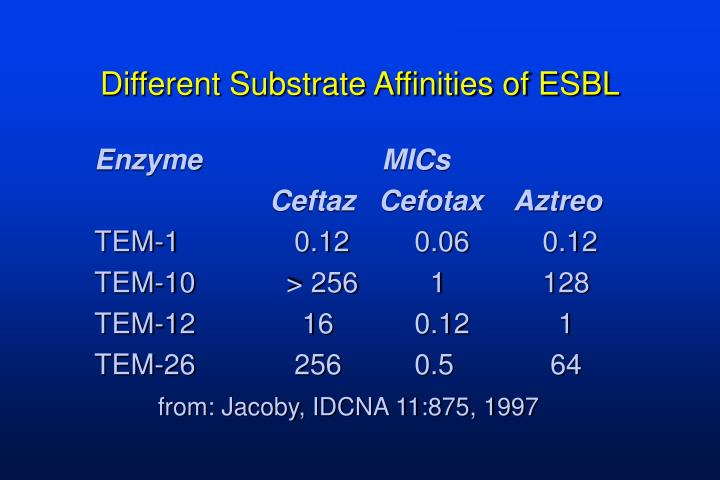 Different Substrate Affinities of ESBL