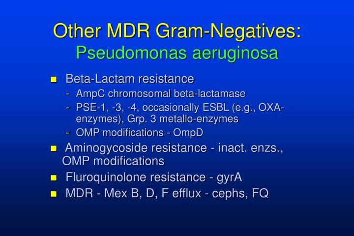 Other MDR Gram-Negatives: