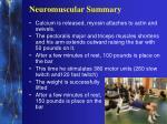 neuromuscular summary3