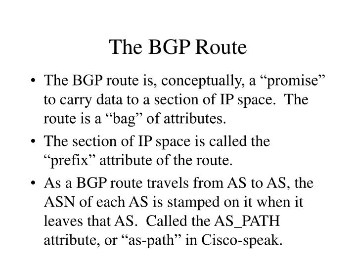 The BGP Route