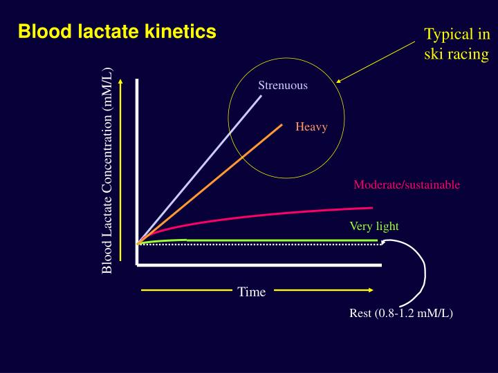 Blood lactate kinetics