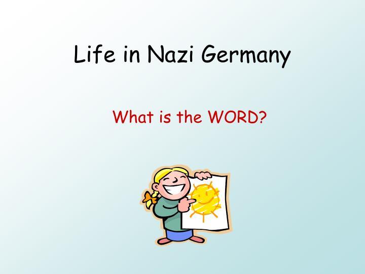 life in nazi germany n.