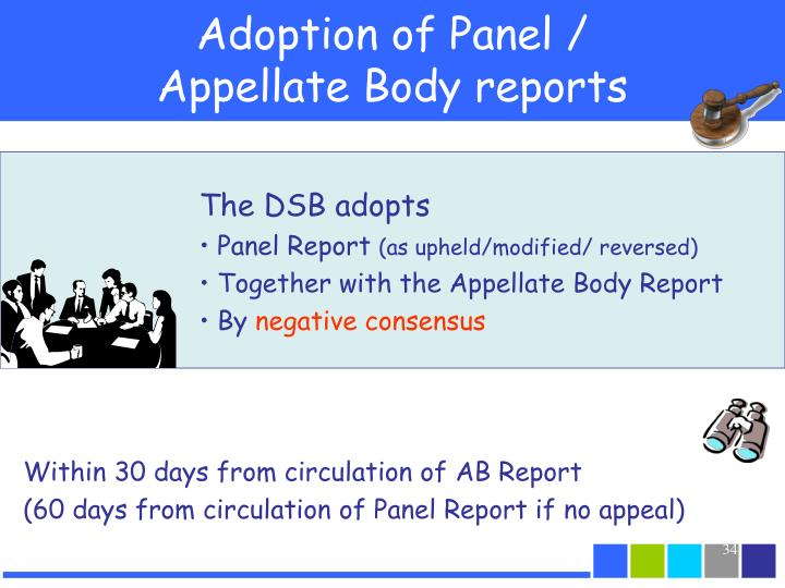Adoption of Panel /