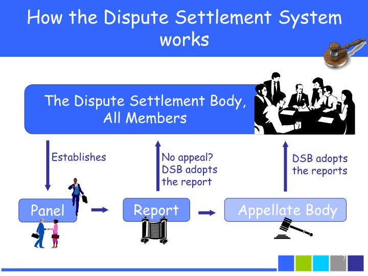 The Dispute Settlement Body,