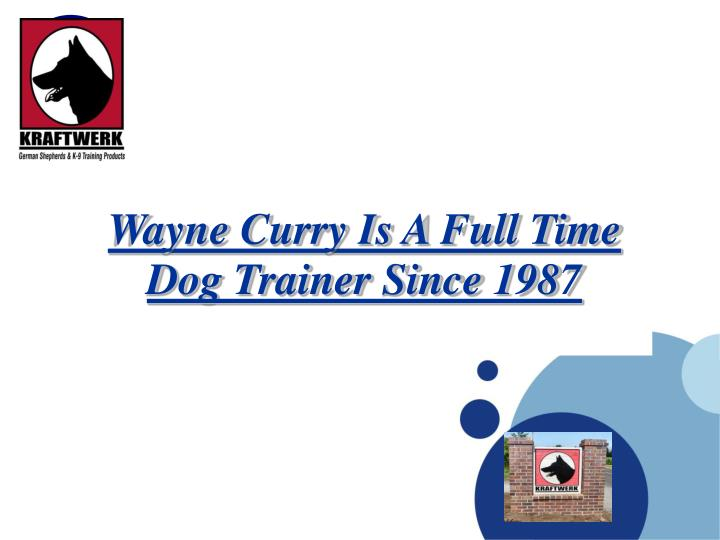 Wayne curry is a full time dog trainer since 1987