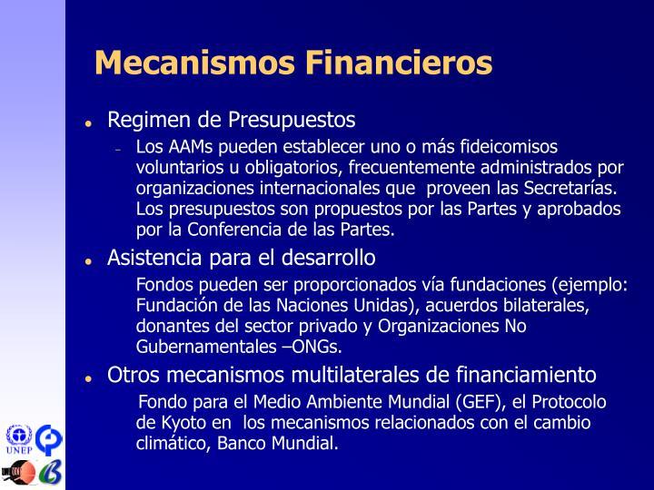 Mecanismos Financieros