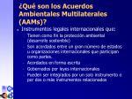 qu son los acuerdos ambientales multilaterales aa m s