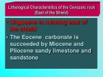 lithological characteristics of the cenozoic rock east of the shield
