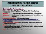sedimentary rocks along the red sea coast1