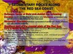 sedimentary rocks along the red sea coast2