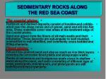 sedimentary rocks along the red sea coast4