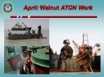april walnut aton work