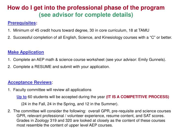 How do I get into the professional phase of the program