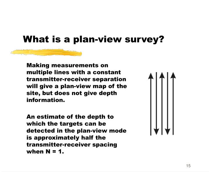 What is a plan-view survey?
