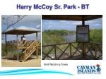 harry mccoy sr park bt38