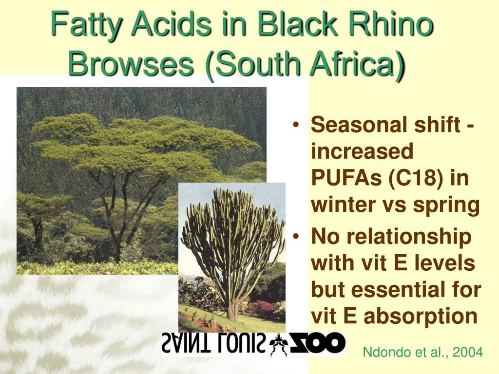 Fatty Acids in Black Rhino Browses (South Africa)
