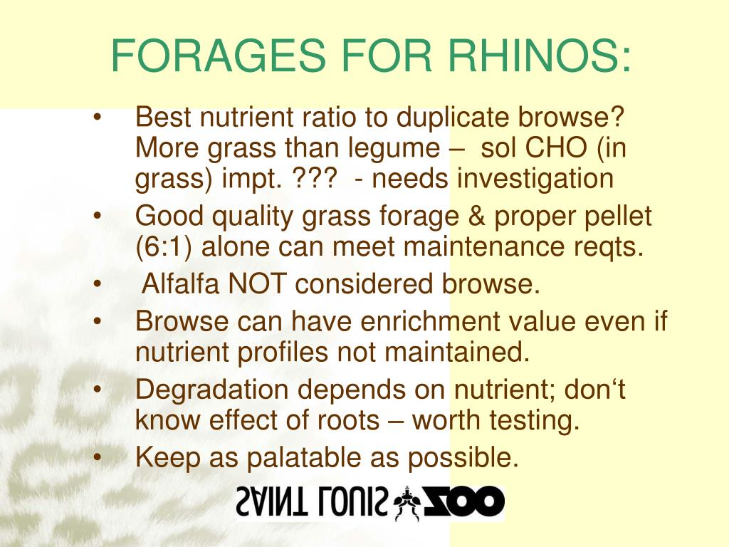 FORAGES FOR RHINOS: