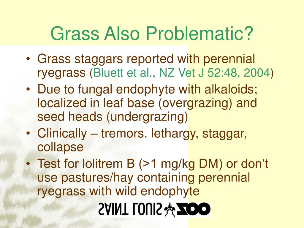 Grass Also Problematic?